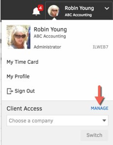 accountant view access