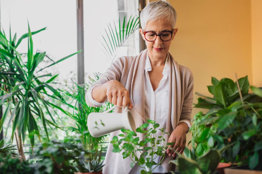 Mature woman in glasses watering her house plants.