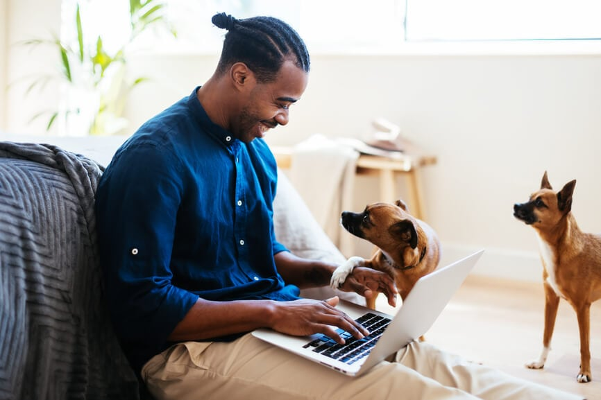 Male small business owner applying for EIDL at home with two puppies.