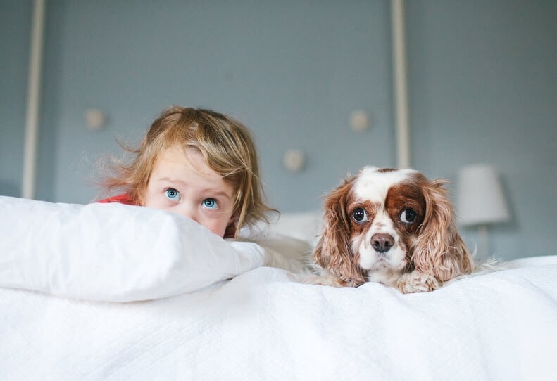 baby and dog on the bed looking up