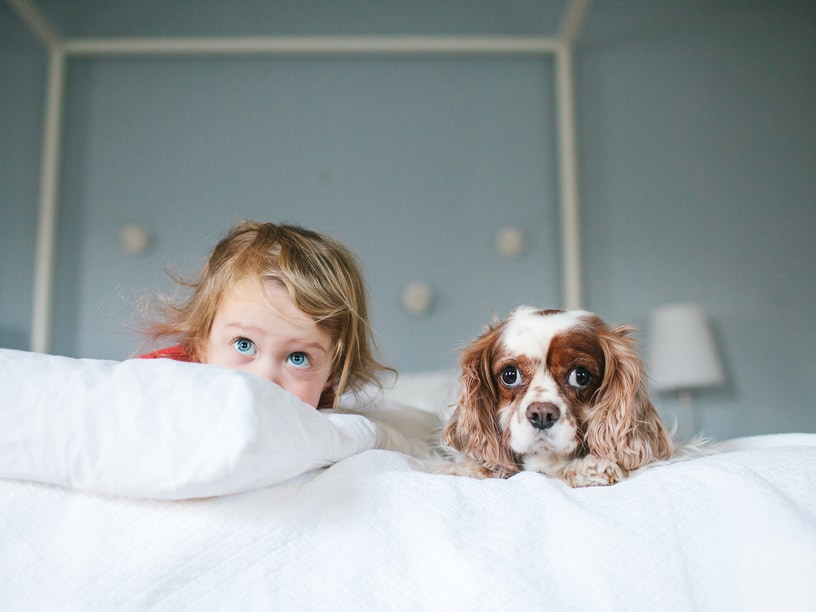 Baby and dog on bed